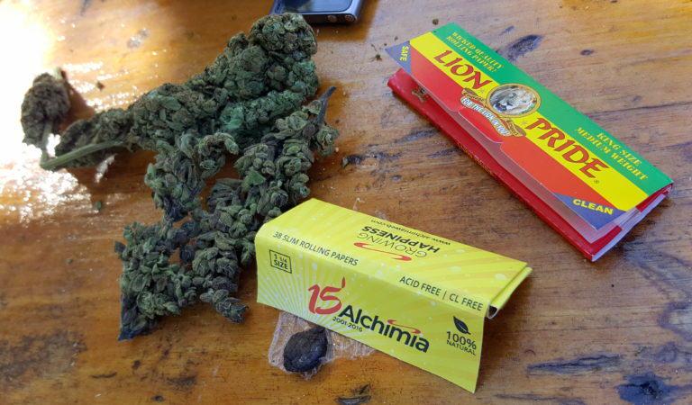 Cànnabis Sativa i Finger Hash a peu de platja