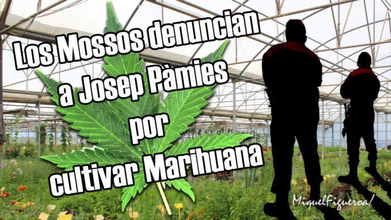 Josep Pàmies denunciat per cultivar marihuana