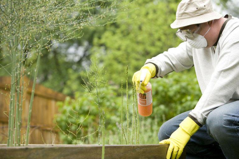 Sempre s'ha d'utilitzar una correcta protecció al polvoritzar fitosanitaris