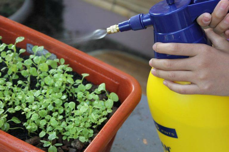 De vegades és millor polvoritza només una petita part abans de fer-ho a totes les plantes