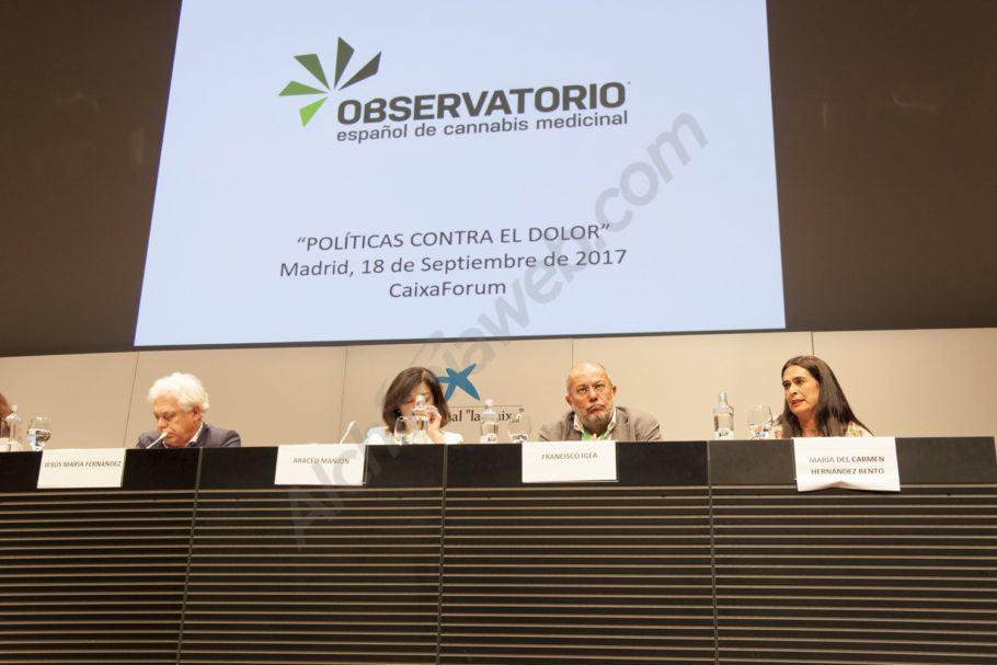 Intervenció dels polítics assistents a la jornada sobre cànnabis medicinal