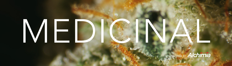 Patrocini Alchimia cànnabis medicinal