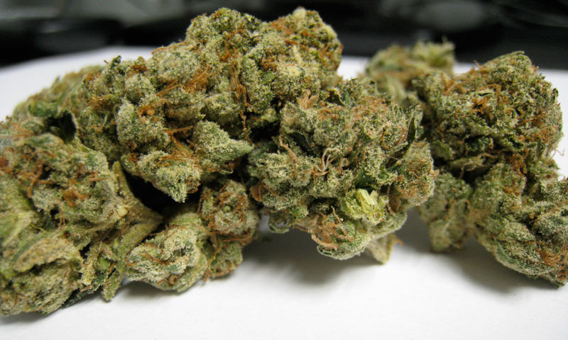 Sour Diesel del Dispensari CannaSOS