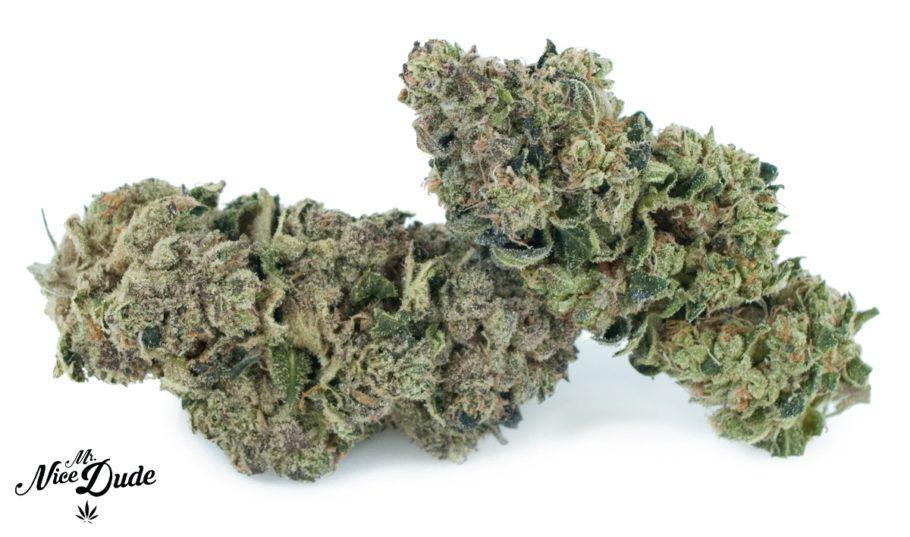 Tendències de la Marihuana als EUA
