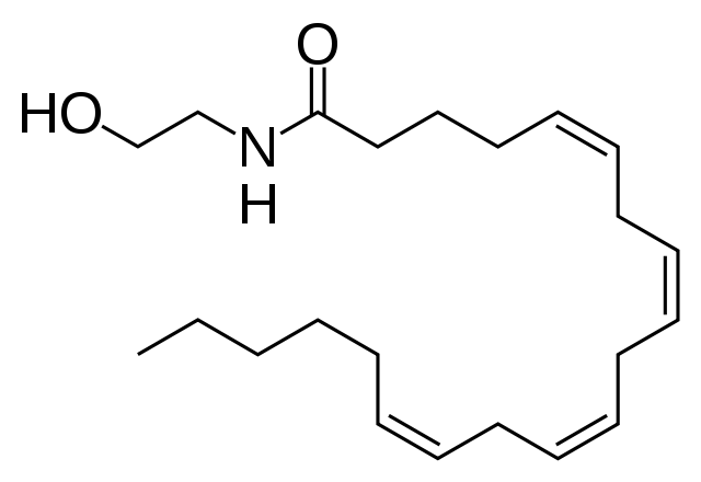 Estructura de l'anandamida, un endocannabinoide molt útil