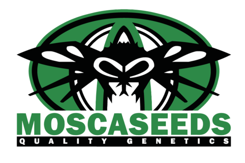 Logo del banc de llavors Mosca Seeds