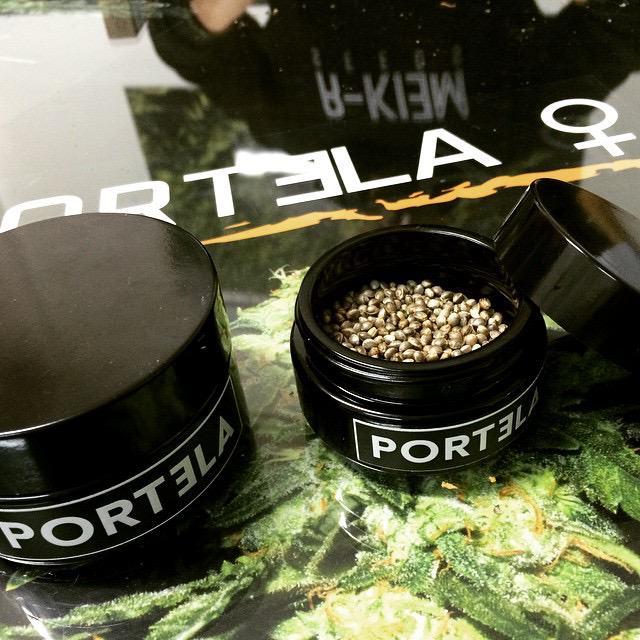 Portela es pot trobar en forma de llavors feminitzades