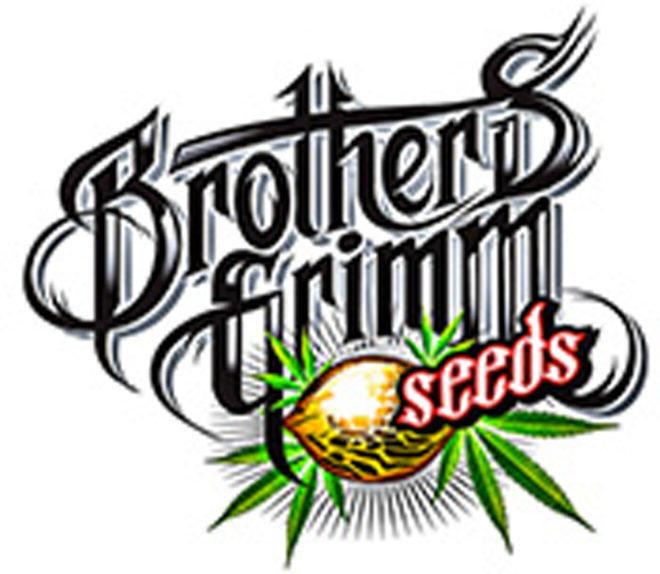 Història de Brothers Grimm Seeds i entrevista a Mr Soul