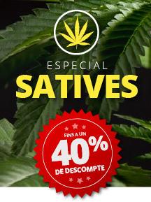 Especial Satives: fins a un 40%
