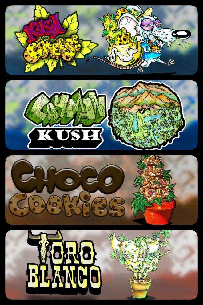 Alguns dels originals Logos amb els que Paisa Grow Seeds presenta les seves varietats de Marihuana