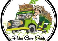 paisa-grow-seeds-dinamisme-i-passio-per-la-marihuana