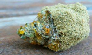 Les Moon Rocks arriben fàcilment al 50% de THC