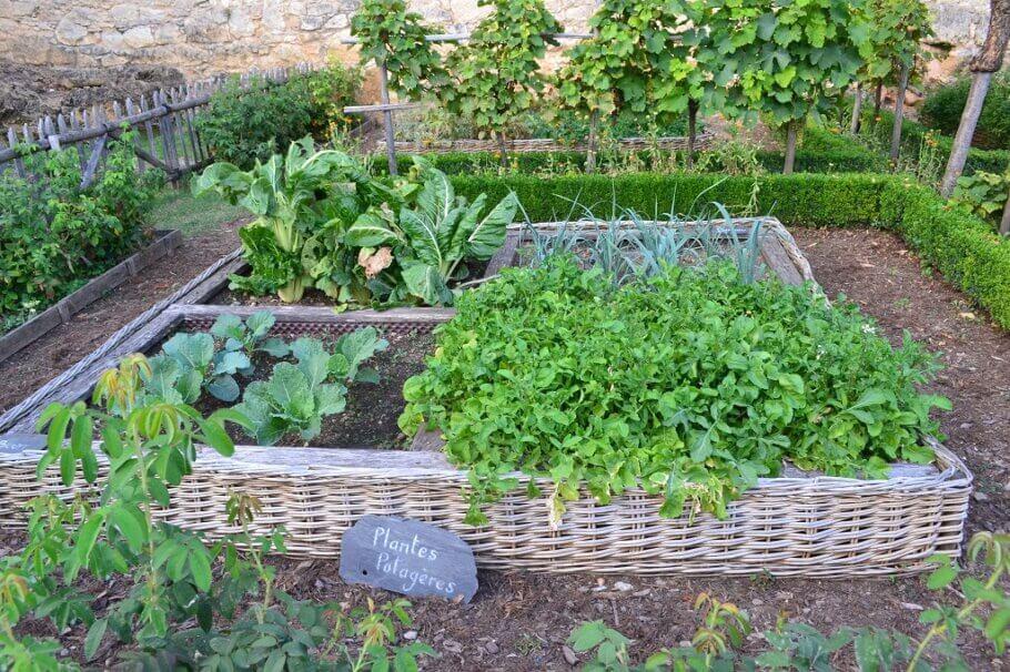 Un hort d'estiu ben planificat