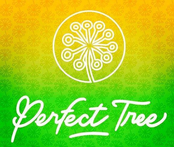 Presentació i entrevista a Perfect Tree Seeds