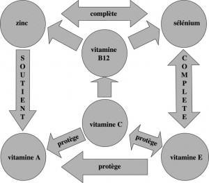 Antoixidants synergy