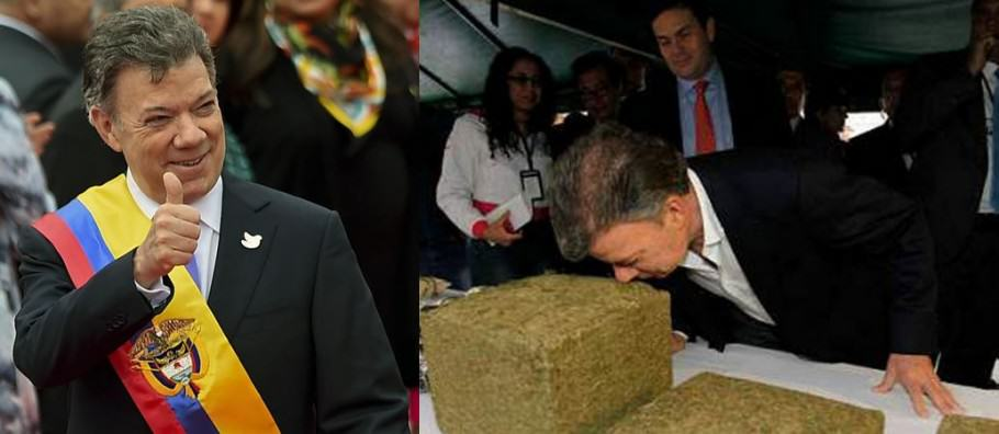 The president of Colombia wants to legalise medical marijuana