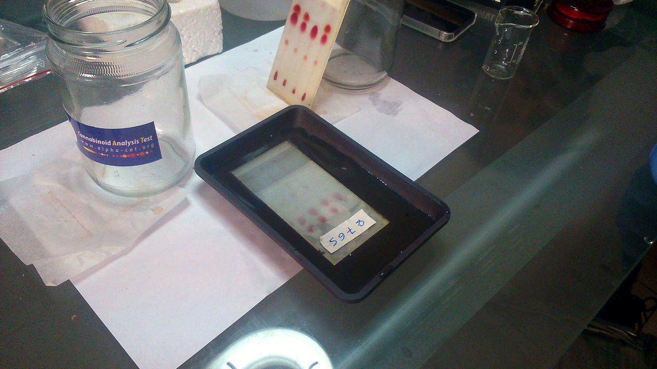 TLC Plate in reactive salts