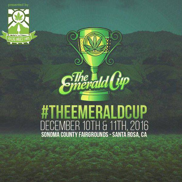 2016 Emerald Cup