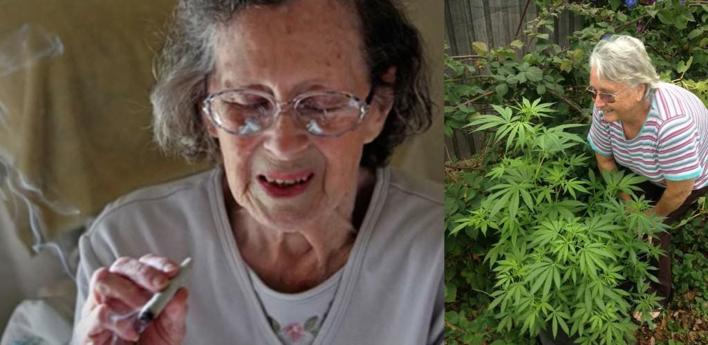 Cannabis and Alzheimer's disease