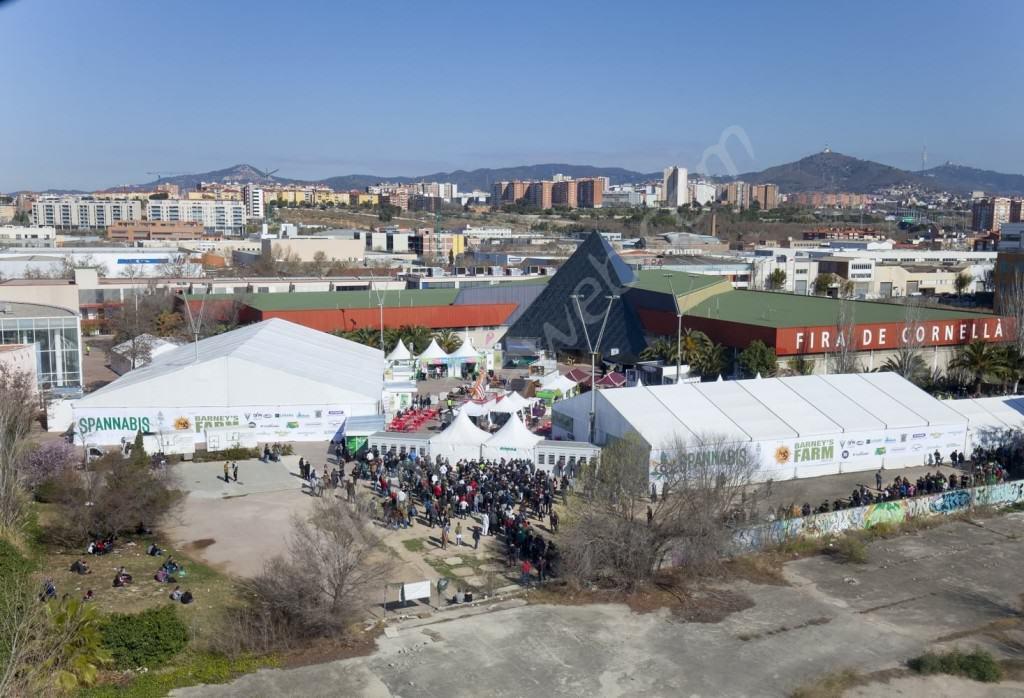 2016 Spannabis, Cornellà fairground