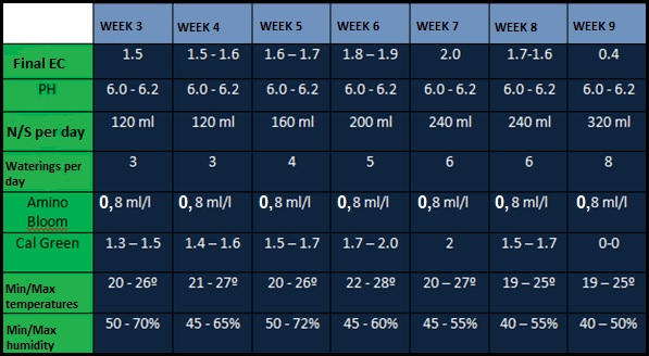 Feeding schedule, weeks 3-9