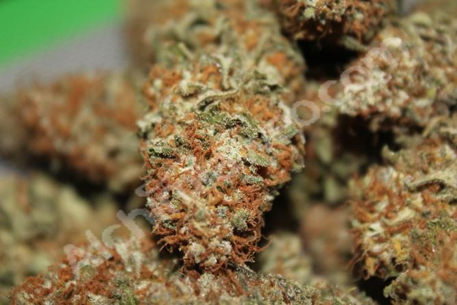 Prozack buds ready to smoke