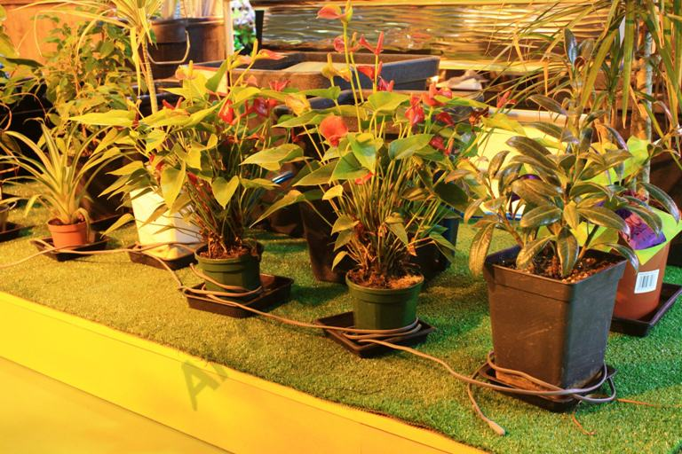 Long heating cord for several plantpots