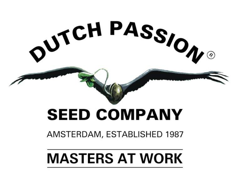 30 Years Of Dutch Passion