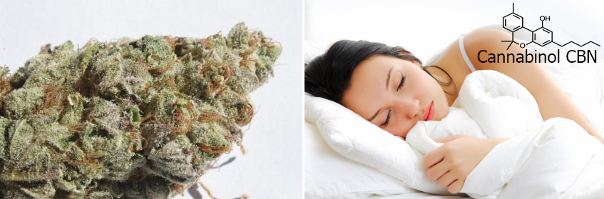 Well-cured cannabis or varieties rich in CBN can aid sleep