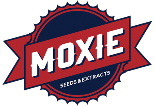 Moxie Seeds available at Alchimiaweb