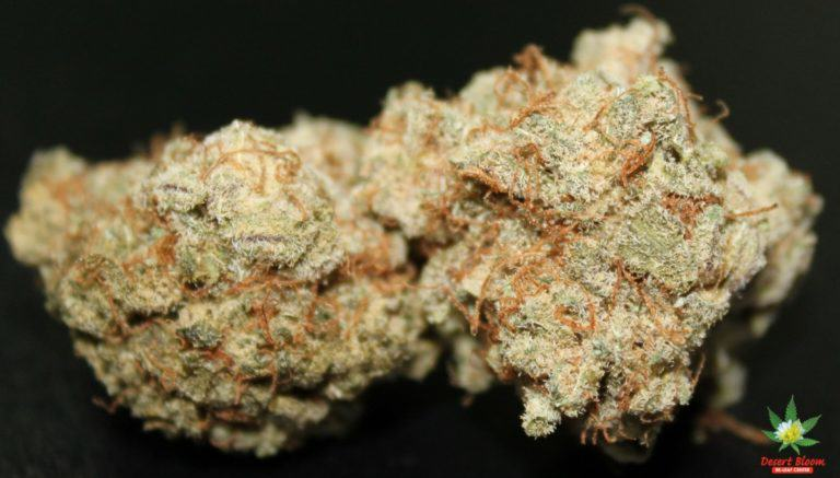 Cherry Pie, also known as Cherry Kush
