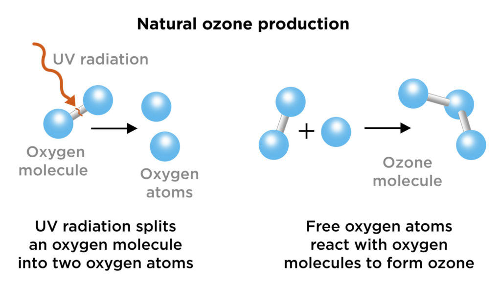 The ozone molecule (O3) is composed of three oxygen atoms (O2) formed by dissociating the two atoms that make up oxygen
