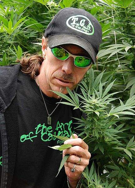 Subcool's passion for cannabis was indisputable