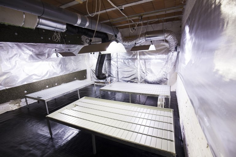 Deep cleaning your grow room or tent