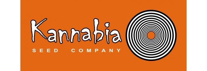 Autoflorissantes de Kannabia: Conseils de culture