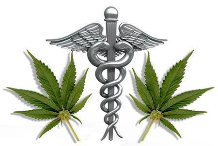 Actualités du cannabis médical, septembre 2012