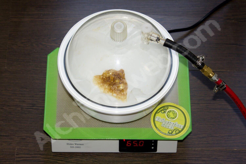 Comment faire de l'huile de cannabis (BHO)