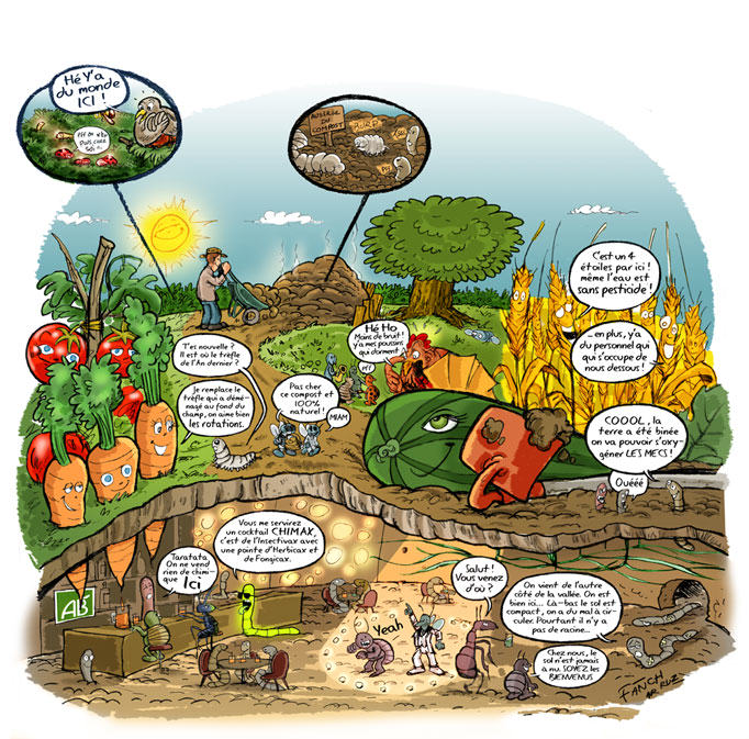 influence of compost microorganisms and npk The use of inorganic fertilizers resulted in low organic carbon content, microbial counts and microbial biomass carbon of the soil, although it increased the soil's npk level which could be explained by the rates of fertilizers being applied.