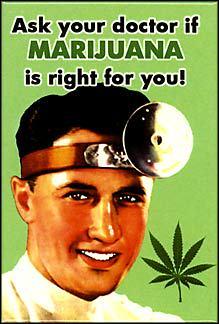 Actualités du cannabis médical, Août 2013