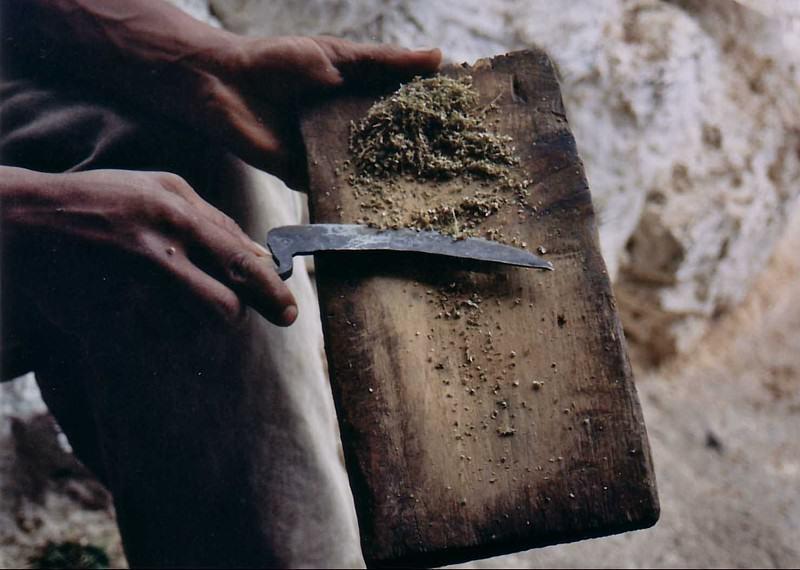 Préparation du Kif marocain