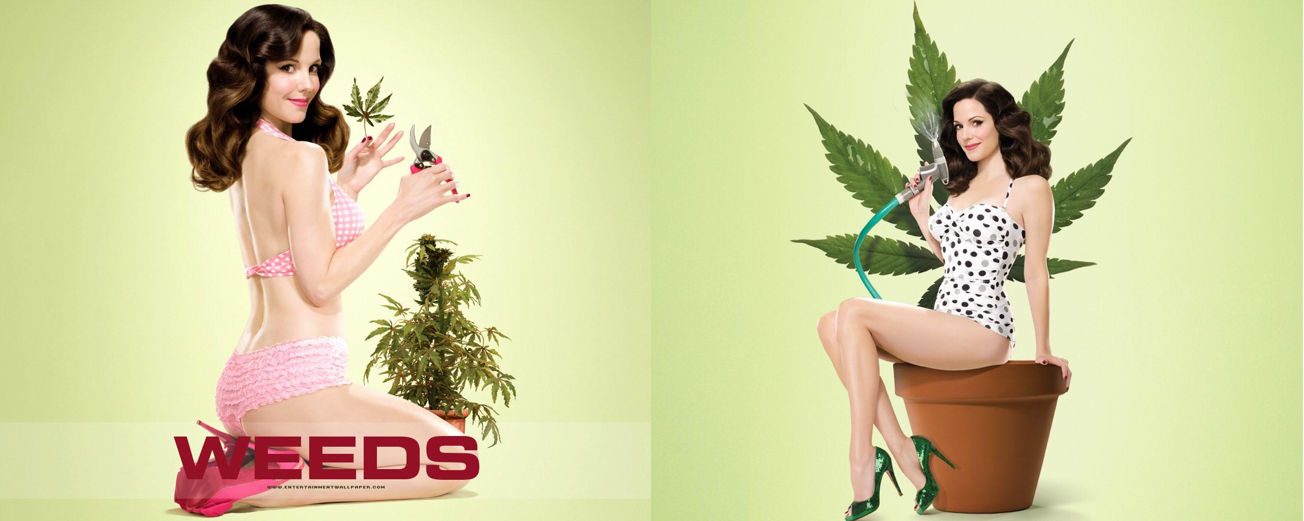 Cannabis et excitation, une synergie de plaisir