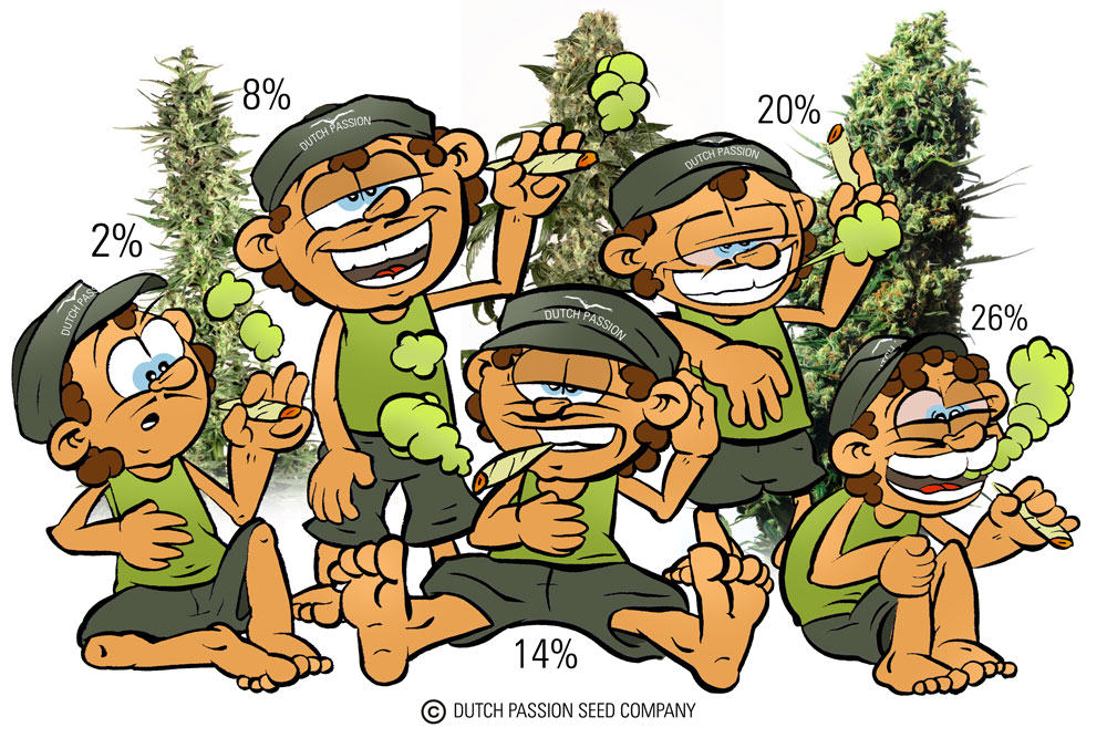 Taux de THC du cannabis