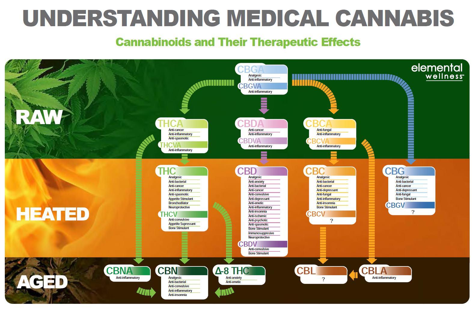 Propriétés médicales des cannabinoïdes