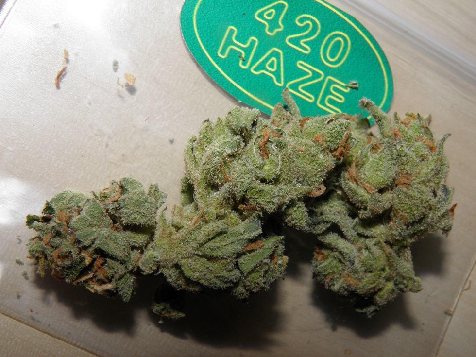420 Haze du 420 Cafe