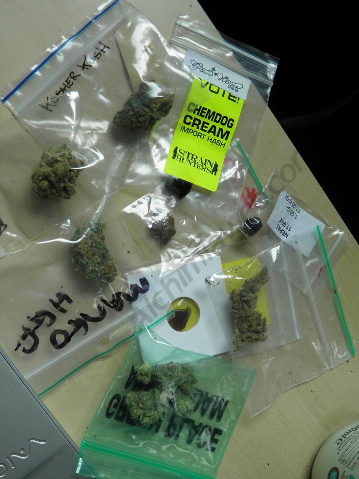 Haschisch et fleurs de cannabis dégustés lors de la Cannabis Cup 2013