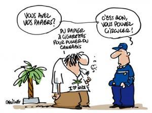 Une proposition de légalisation de la marijuana vient d'être déposé au Sénat français