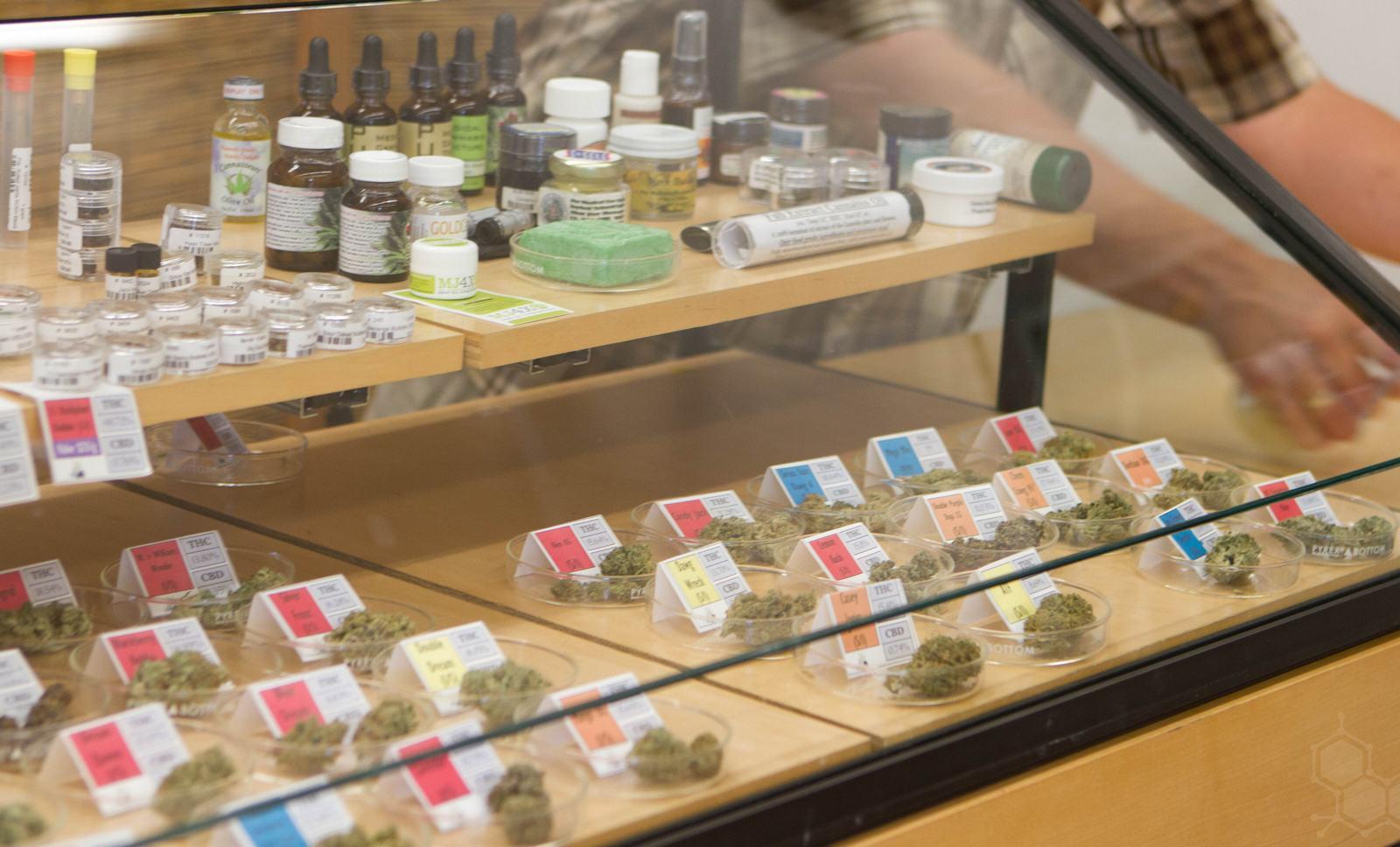Diversité de la plante de cannabis