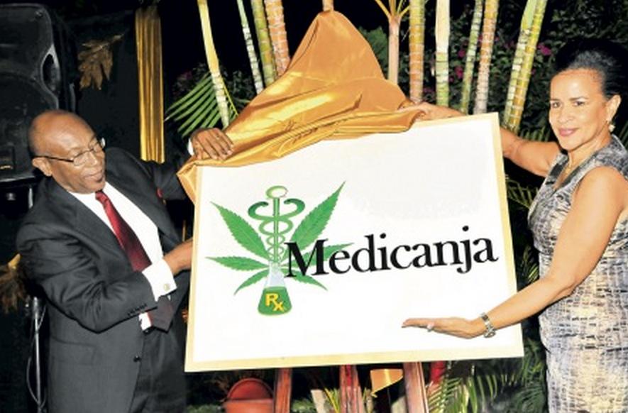 Medicanja, première entreprise jamaïcaine de cannabis médical