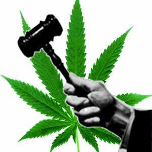 Cannabis et loi