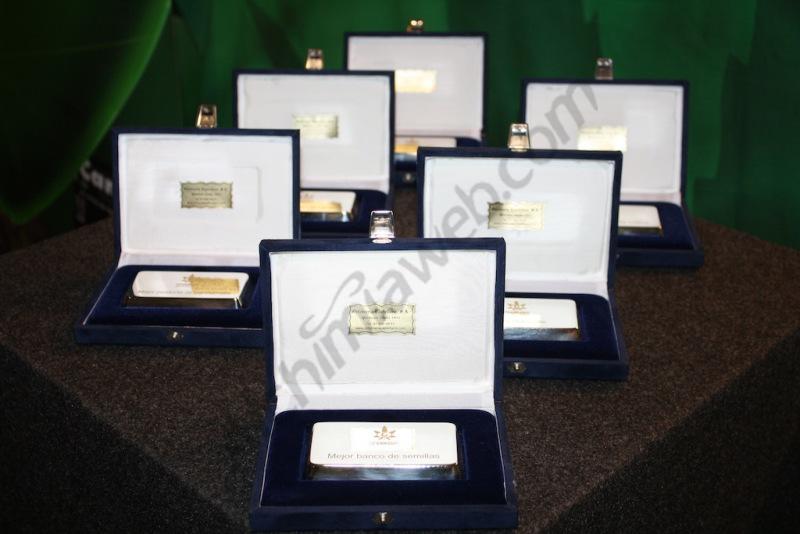 Plaques officielles des prix de la Cannabis Champions Cup